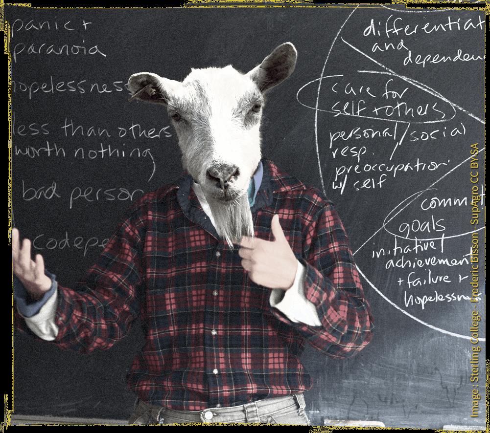 Illustration du thème : une chèvre devant un tableau avec des symboles scientifiques